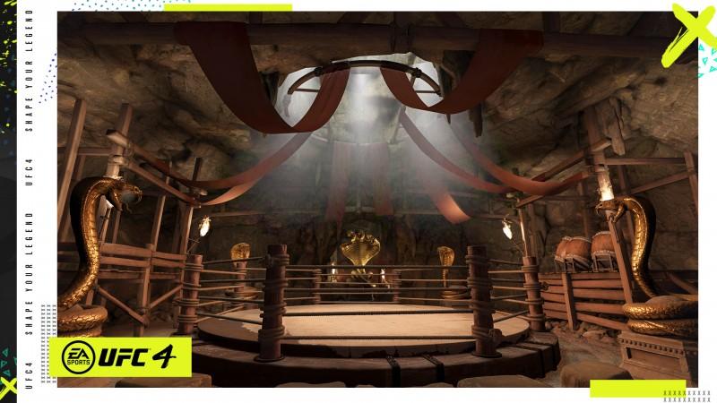 EA Sports UFC 4如何演變特許經營權5